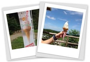 牧場でソフトクリーム販売中